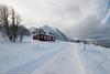 Lofoten-2017-3902 (Gert vdn Berg) Tags: nordland noorwegen no myrland lofoten snowyroad winter norway redhouse