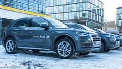 Nowe Audi Q5 - Roadshow w Audi Centrum Gdynia-1340907
