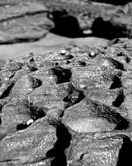 Forresters Beach (Paul D'Ambra - Australia) Tags: forrestersbeach pauldambra dambra australia downunder seeaustralia travel holiday vacation wanderlust ttot tourist travelgram tourism trip seetheworld beautifuldestinations travelphotography duplicate lalentephotography sydneyphotographer photographer automotivephotographer portraitphotographer carphotographer