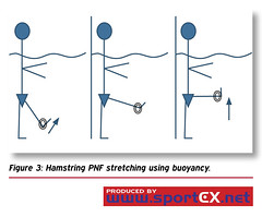 Hamstring PNF stretching using buoyancy. (sportEX journals) Tags: rehabilitation massagetherapy sportex sportsinjury sportsmassage watertherapy aquatictherapy sportexdynamics