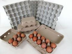 แผงไข่กระดาษ ถาดไข่กระดาษ pulp mold eggtray-11