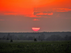 dark, orange and grey (Vadim Beldiy) Tags: nikon s9100 coolpix sunset sun clouds sky beautiful autofocus awards icapture elite photography ringexcellence dblringexcellence flickr estrellas quarzoespecial blinkagain infinitexposure saariysqualitypictures flickrbronzetrophygroup ukraine coolpixs9100 nikoncoolpixs9100 epic vadim beldy vadimbeldy landschaft wood trees sunshine springtime brilliant novipetrivci petrivci novyyepetrovtsy petrovtsy kyivoblast kievregion новыепетровцы новіпетрівці flickrunitedaward