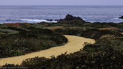 the path to the sea (plachance) Tags: ocean beach rock landscape coast surf canonef24105f4l