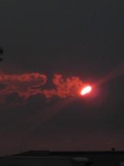 June 2011 080 (biggeorgen) Tags: fl palmcoast june2011
