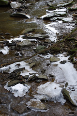 (Shane Henderson) Tags: winter snow tree ice nature water creek forest outdoors frozen woods rocks stream branch stones fallen flowing sarver toddsanctuary buffalotownship toddnaturereserve knixonsrun