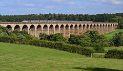 Underneath The Arches (Feversham Media) Tags: yorkshire harrogate northyorkshire eastcoast hst viaducts highspeedtrain intercity125 pannal crimplevalley railwayviaducts crimpleviaduct leedstoharrogateline