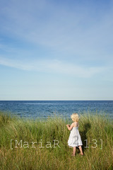 By the sea (Marissen) Tags: blue light sea summer holiday beach girl grass vertical clouds person evening relaxing tranquility dreaming romantic nordic relaxation whitedress greensky facingthesea