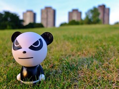 060 (waltermitty1970) Tags: toy panda towers highrise essexuniversity fujix10