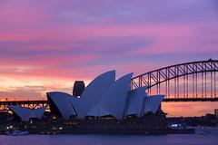 Sydney Opera House - IFR 2013 (tco1961) Tags: bridge sunset house opera harbour sydney australia nsw ifr 2013 img2190 tco1961