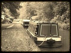 ~ Barnton - Trent & Mersey Canal ~ (A4ANGHARAD) Tags: fuji cheshire fujifinepix trentmersey a4angharad macevans sl240 canallythings