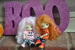 Happy Halloween! (Scribble Dolls) Tags: doll cabinet charles fairy tiny bjd ccc creature firefly faerie jpop fae fidelia balljointeddoll fidelina