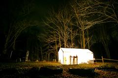 Nov.Gorge- (111 of 280) (Michael William Thomas) Tags: photo journal vio viovio