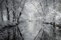 Winter Wonderland (Thomas James Caldwell) Tags: park trees winter white snow reflection ice nature creek forest mirror woods media december state pennsylvania pa ridley delawarecounty delco 2013