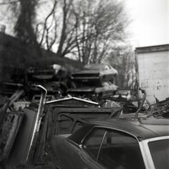 North Portland Junkyard (codythomasart) Tags: white black cars 120 film analog portland roll plus hp5 medium format junkyard rolli ciroflex rapax