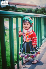Microfashion in Cusco, Peru (asnagpal) Tags: cute peru girl hat fashion cuzco sweater clothing colorful dress cusco traditional culture adorable cultural peruvian avenidaelsol microfashion