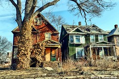 1 (TooLoose-LeTrek) Tags: urban house tree leaves urbandecay detroit ivy abandon blight gx7