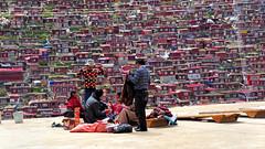The Religious Encampment of Larung Gar, Tibet 2013 (reurinkjan) Tags: monastery 2013 བོད་ལྗོངས། ©janreurink tibetanplateauབོད་མཐོ་སྒང་bötogang tibetབོད buddhistསངས་རྒྱས་ཆོས་ལུགས་པ monkགྲྭ་བ།grwaba buddhismསངས་རྒྱས་ཆོས་ལུགས།sangsrgyaschoslugs tibetannationalitytibetansབོད་རིགས།bodrigs tibetannationtibetanpeopleབོད་ཀྱི་མི་བརྒྱུདbökyimigyü nunཇོ་མོ།ani sisterhoodཨ་ནིའི་ཚོགས་པanitsokpa khamཁམས།easterntibet ༢༠༡༣ khamཁམས་བོད khamsbodkhamwö sertalགསེར་ཐར།countyserthar larunggarབླ་རུང་སྒར། nyingmapahermitage khenpojikpunalsorecognizedastertonsogyeltheincarnationoflerablingpa gyutrullhakhang gyultrullhakang tonpeidekhang monasticcollegeshedraoflarunggar foundedbydudjomlingpa inthelate19thcentury greatertibetབོད་ཆེན་པོ böchenpo