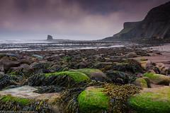 Saltwick Bay - Black Nab (paulraybouldphotography) Tags: sea black water rock bay cove yorkshire tide low north cliffs whitby receding nab saltwickbay fossilised