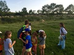 IMG_8309 (Club Pyrene) Tags: club cerdanya pirineos pirineus campaments pyrene campamentos coloniesestiu coloniesestiupyrene colòniesestiu