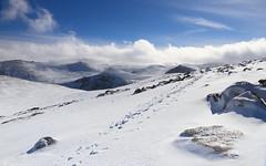 Cloud Wave (Jonny Hirons) Tags: snow cairngorms voila wave cloud cold winter scottishwinter