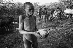 PRIMITIVE RITUAL 4 (daniele romagnoli - Tanks for 15 million views) Tags: suri surma ethiopia etiopia äthiopien ethiopie etiyopya etiopien αιθιοπία أثيوبيا エチオピア 에티오피아 इथिय ोपिया эфиопия אתיופיה أفريقيا 比亚 etiopija africa afrique アフリカ 非洲 африка αφρική afrika 아프리카 etnia etnico ethnique этниче 種族 民族性 ethnicity tribu tribes tribo tribale tribal tribe племя 部族 omo afrikan africani romagnolidaniele omoriver omovalley valledellomo 埃塞俄比亚 etnias nikon d610 decorazioni artistico pigmento artistic tradizione ethnie ethnic cultura bodypainting ethnology етиопија bianconero bw blackandwhite biancoenero rito ritual primitivo primitive cow cows