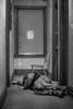 Sleeping It Off (FeralKid1) Tags: doyle warmer winter