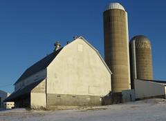 Wisconsin Dairy Barn and Silos (Buffalo County, Wisconsin) (courthouselover) Tags: wisconsin wi barns farms buffalocounty