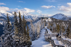 Braving the Boardwalk (Kristin Repsher) Tags: alberta banff banffgondola banffnationalpark canada canadianrockies d750 nikon pinetrees rockies rockymountains snow sulphurmountain winter