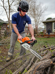 003ElmTreeVitality (Symic) Tags: tree vitality treevitality nicko nick lund chain saw chainsaw cut wood work land landscape helmet safety navy blue dust sawdust boots man manly pile log logs elm spring trim remove new sharp fresh stihl farm boss orange glass sun sunglasses green grass job worksite entrepreneur self employed