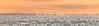 Round the Island Race Sunrise Panorama. (s0ulsurfing) Tags: summer panorama june boats island coast boat sailing yacht horizon sails sigma telephoto isleofwight boating sail yachts yarmouth fleet isle wight yachting 6d flotilla westwight 50500mm roundtheisland 2013 s0ulsurfing rtir coastuk jpmorganassetmanagementroundtheislandrace roundtheislandyachtrace welcomeuk