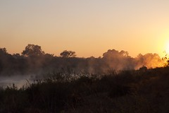 Sunrise (kasei) Tags: sunrise southafrica nationalpark time kruger photospecs lumixgvario1445f3556