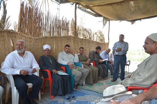 'Best Management Practice' in Fayoum, Egypt. Photo by Jens Peter Tang Dalsgaard, 2013.