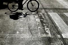 Rodando, rodando, rodando voy; rodando vengo. (Yolo Axolotl) Tags: road city shadow urban blackandwhite bw blancoynegro lines bike bicycle wheel mxico canon df camino ciudad bicicleta sombra urbano rueda distritofederal insurgentes lneas cleta avenidadelosinsurgentes t1i yoloaxolotl
