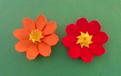 Abstract Flowers (mmukhopadhyay) Tags: photobooth