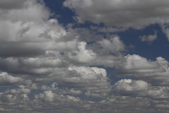 Wolken (paulbunt60) Tags: wallpaper sky cloud background wolk