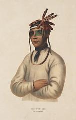 Anglų lietuvių žodynas. Žodis Ojibwe reiškia anišinabų kalba lietuviškai.