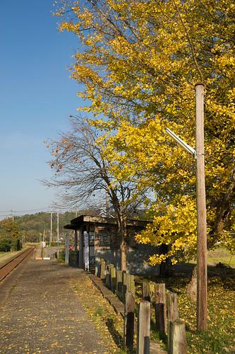 2009-11-21_DSC7219