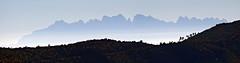 Panoramica de Montserrat (Pep Companyó - Barraló) Tags: de natura panoramica montserrat muntanya bages cardona paisatge llobregat anoia bergueda josep boires baix serrateix companyo barralo