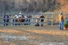 2013-12-15 (150) Miss Nicole's Winter Horse Show (JLeeFleenor) Tags: horses youth caballo cheval photography md photos uma maryland cal jockey horseshow jinete cavallo cavalo pferd equestrian kuda alogo horsebackriding equine hest thoroughbreds soos hevonen cuddy paard cavall kon koin  jokey fantino hst ceffyl  jquei  ko faras hestur  perd croom ngi  konj    capall beygir yarraman dokej youngriders therapeuticriding youthactivities rennreiter missnicole  pfeerd   okej kilparatsastaja jocheu