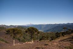 (*natalia altamirano lucas*) Tags: volcan
