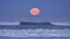 A65V 118 (2) Getting closer! (Allen Woosley) Tags: moon oregon seaside setting a65v