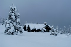 Winter at Norefjell, Norway (bjorbrei) Tags: winter snow norway norefjell