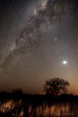 Skies of Zambia