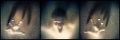 I'm Coming For You (Michel Waltrowski) Tags: portrait selfportrait man window monster self studio bathroom shower scary hands triptych hand autoportrait fear main mains douche homme strobe monstre peur salledebain triptique strobist