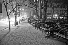Snow Watching (Misha Sokolnikov) Tags: park leica old city nyc blackandwhite usa snow newyork tree night america umbrella square photography 50mm photo loneliness noiretblanc monochrom snowfall unionsquare newyorkny blackwhitephotos blanconoir leicamonochrom