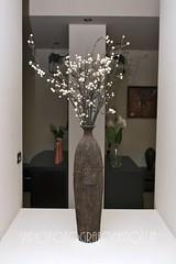 Mobili, accessori e decorazioni per l'arredamento della casa. (rosario.annunziata) Tags: vasi arredamento mobili cuscini arredocasa