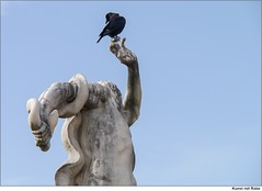 Laokoon mit Schlange und Rabe   /   Laokoon with snake and raven (to.wi) Tags: art statue snake kunst sage rave torso ars figur schlange rabe krähe mythologie griechisch laokoon towi