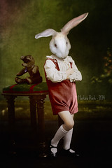 Moody Alexander (Martine Roch) Tags: boy portrait cute rabbit animal photoshop vintage funny moody surreal colorized teddybear martineroch flypapertextures moodyrabbit rabbitinclothes
