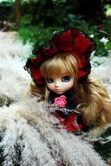 Alison (Gabi Stt) Tags: blue red white anime nature doll wig pullip alison limitededition rozenmaiden shinku junplanning obitsubody
