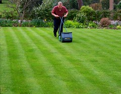 Here Comes Summer? (Richie Wisbey) Tags: grass spring lawn richard cutting mower stripey mowing wisbey vision:outdoor=0952 vision:p